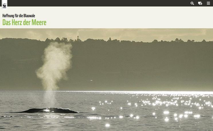Der World Wildlife Fund mit einem Feature über den Schutz der Blauwale.